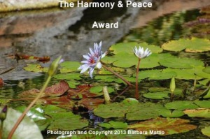 Harmony & Peace Award