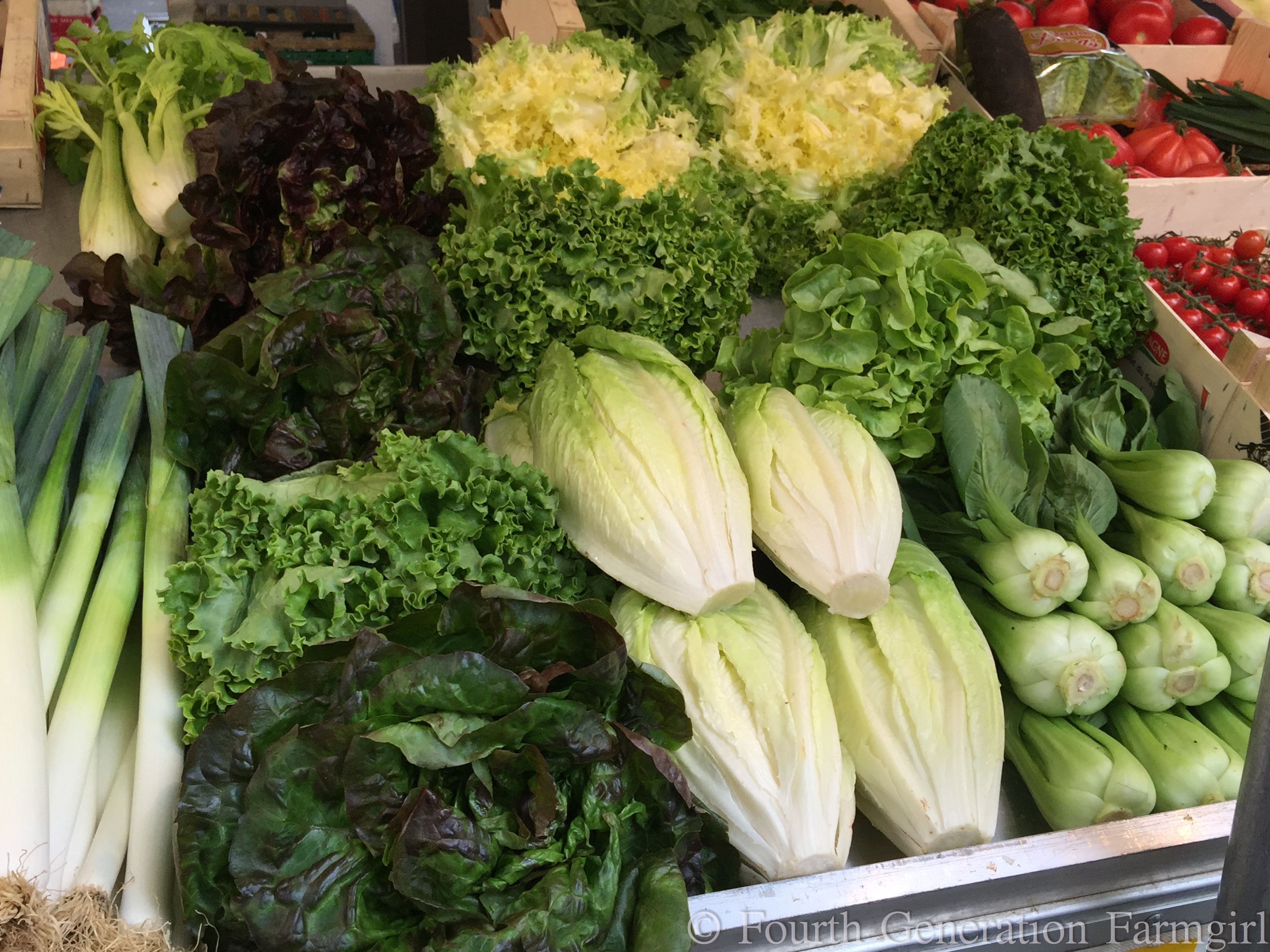 Outdoor Food Markets Manhattan